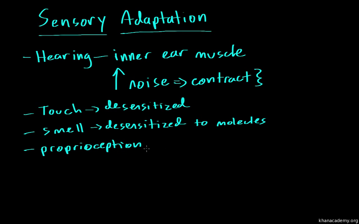 Sensory Adaptation Video Khan Academy
