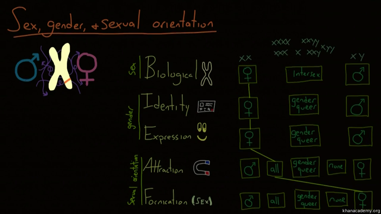 Different sexual orientation definitions of math