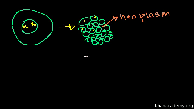 interphase video khan academy G1 Phase Outline