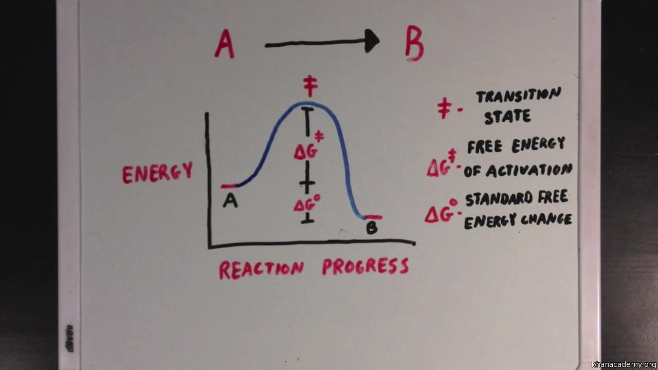 Enzymes And Activation Energy Video Khan Academy Free Diagram
