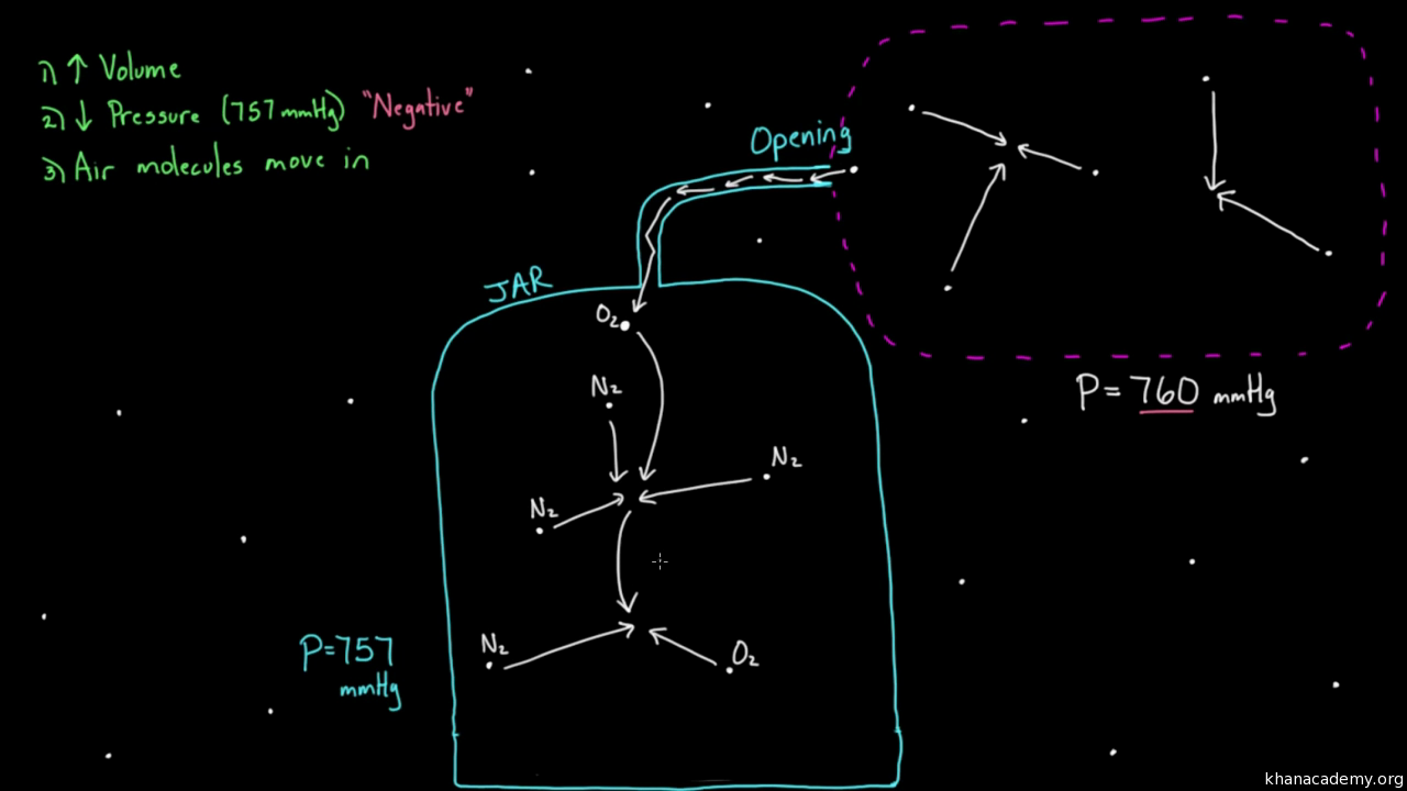 Inhaling and exhaling video khan academy nvjuhfo Image collections