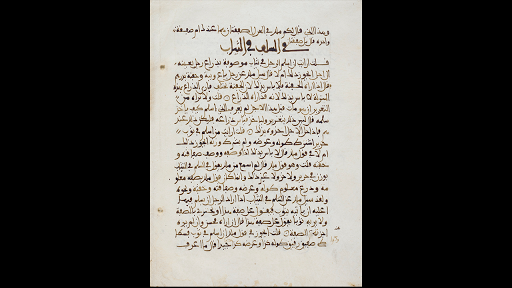 The development and spread of Islamic cultures (article