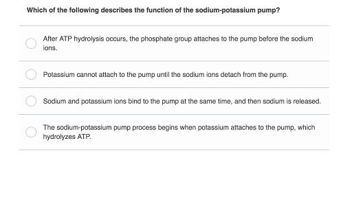 pogil activities for high school biology answer key membrane structure and function
