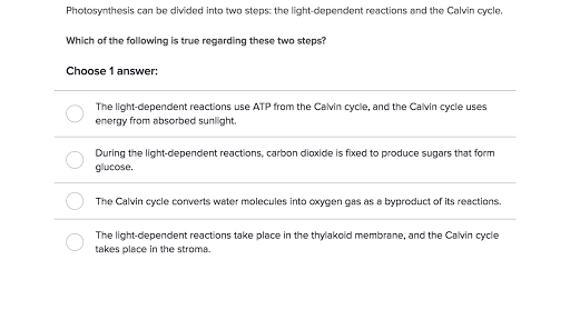 Photosynthesis video – Photosynthesis Review Worksheet Answers