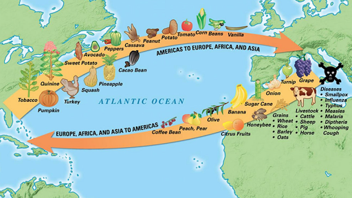the european conquest of the americas essay Spanish conquest in the americas research papers cover  research papers on the spanish conquest in the americas  when european mariners discover new trade.