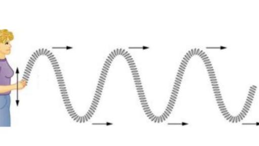 Transverse and longitudinal waves review (article) | Khan Academy