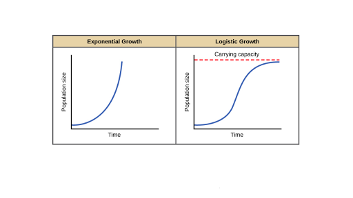 Exponential growth & logistic growth (article) | Khan Academy