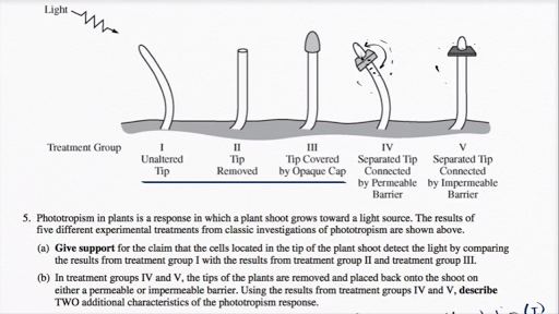 ap bio essay question 1995 Ap biology sample essays: the exam requires that all four essays be answered each exam question the activities of organisms change at regular time intervals.