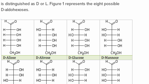 what is the most important monosaccharide