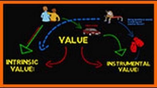 Fundamentals: Intrinsic vs  Instrumental Value