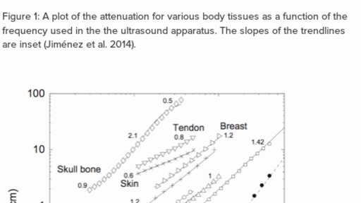 The effects of ultrasound on different tissue types