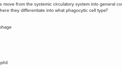 Immune system questions (practice)   Khan Academy