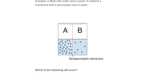 Worksheet Osmosis And Tonicity - best worksheet