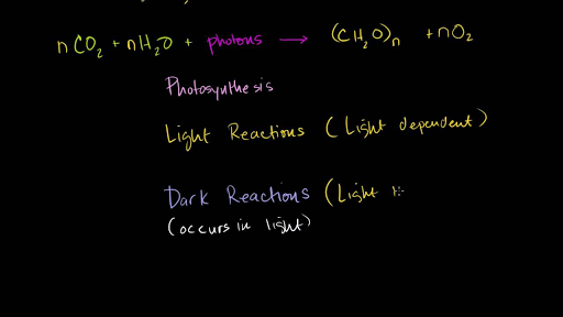 Photosynthesis Video Khan Academy