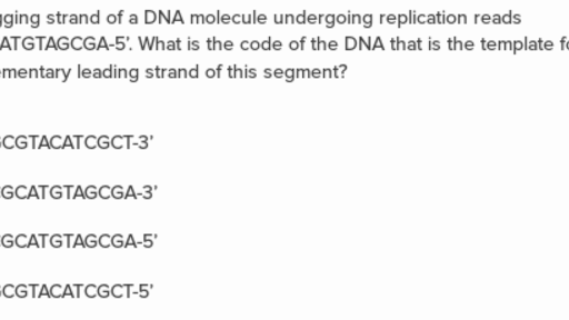Dna Questions Practice Biomolecules Khan Academy