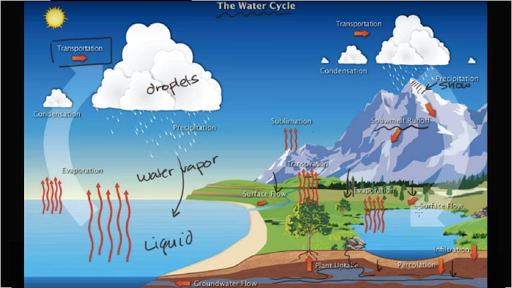 the water cycle (video) ecology khan academy Photosynthesis and Respiration Cycle Diagram biogeochemical cycles