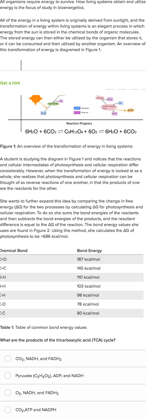 Free Energy Photosynthesis And Cellular Respiration Practice