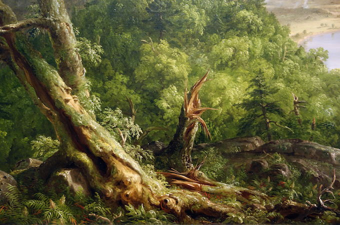 Blasted Tree (detail), Thomas Cole, View from Mount Holyoke, Northampton, Massachusetts, after a Thunderstorm—The Oxbow, 1836, oil on canvas, 51 1/2 x 76 inches / 130.8 x 193 cm (The Metropolitan Museum of Art)