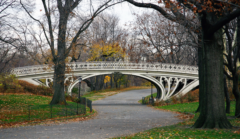 Olmsted and Vaux, Central Park (article) | Khan Academy