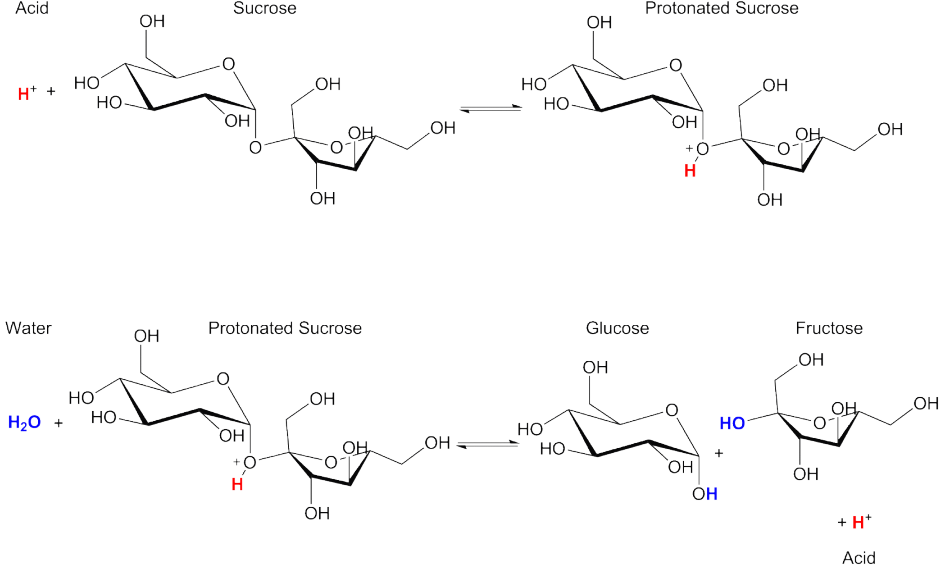 what type of catalysts affect biochemical reactions