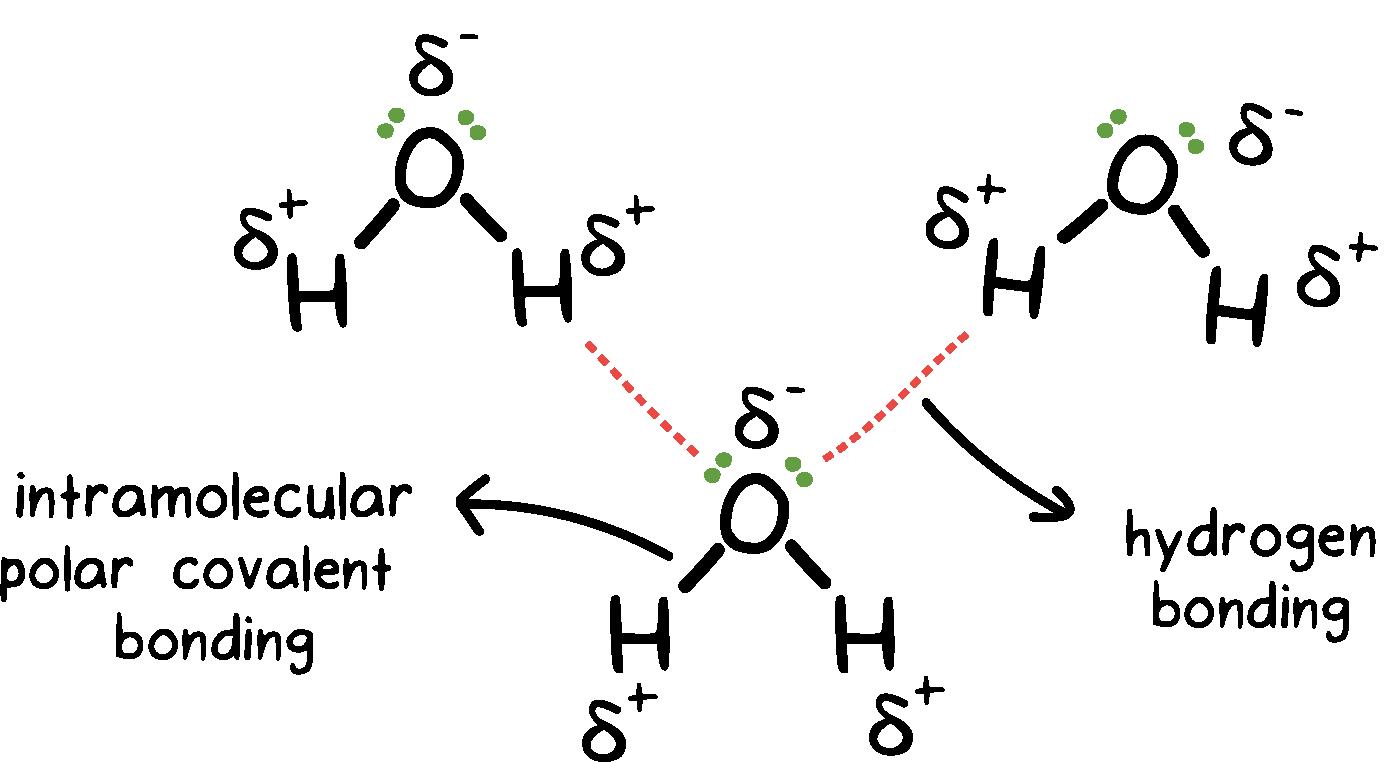H20 Bonding Diagram | Wiring Diagram on heat chemistry, organic chemistry, fe chemistry, electrostatic attraction in chemistry, power of chemistry, h2s chemistry, no2 chemistry, ac chemistry, gas chemistry, pb chemistry, cl chemistry, na chemistry, calorie chemistry, co2 chemistry, no chemistry, o2 chemistry, nacl chemistry, oh chemistry, hbr chemistry, h2 chemistry,