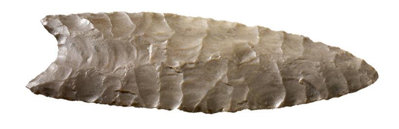 Clovis spear point c. 11,000 B.C.E., found Arizona, flint, 2.98 x 8.5 x 0.7 cm
