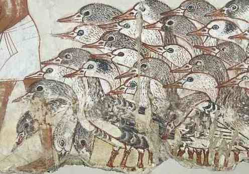 Geese (detail), Painting from the tomb chapel of Nebamun, c.  1350 BCE, paint on plaster, whole fragment: 71 x 115.5 cm, Thebes © Trustees of the British Museum