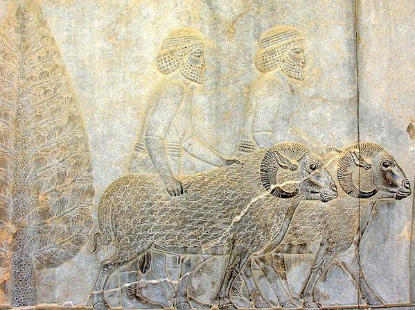 Assyrians with with Rams, Apadana, Persepolis
