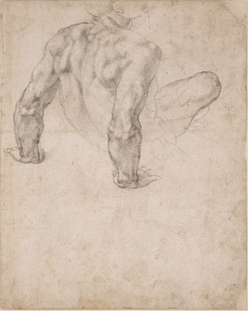 Michelangelo, A male nude seen from behind, 1540, black chalk, 21.99 x 30.48 cm, © The Trustees of the British Museum