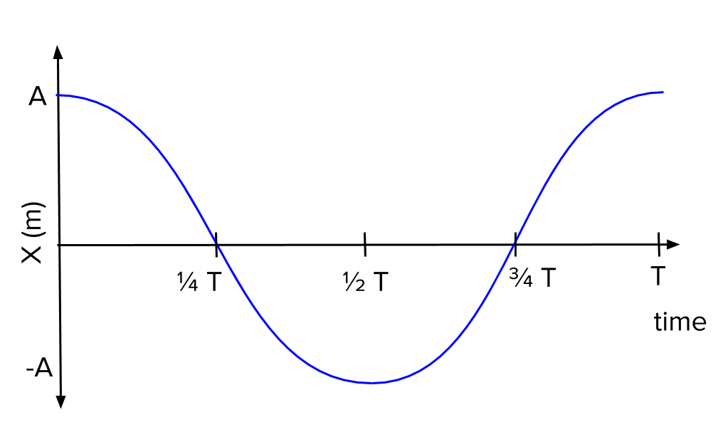 Introduction to simple harmonic motion review (article