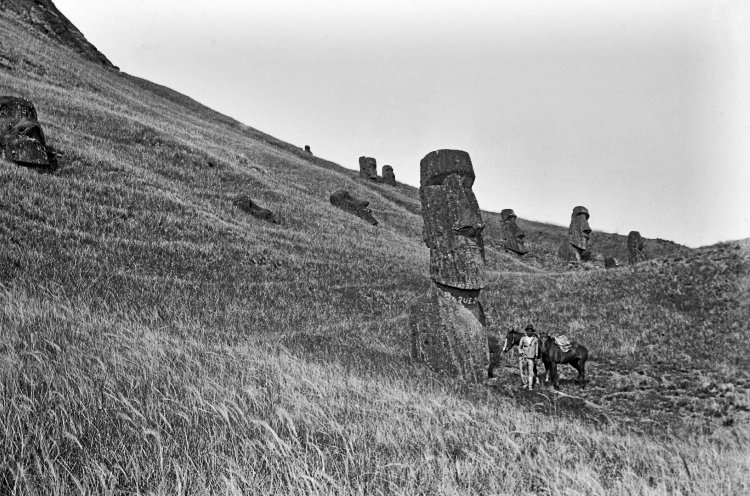 View of the northeast of the exterior slopes of the quarry, with several moai (human figure carving) on the slopes; a young South American man with a horse is standing in the foreground next to one of the moai carvings, as a scale, Easter Island, photograph, 8.2 x 8.2 cm © The Trustees of the British Museum