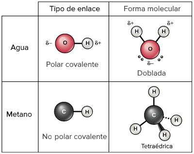 Enlaces Químicos Artículo Khan Academy