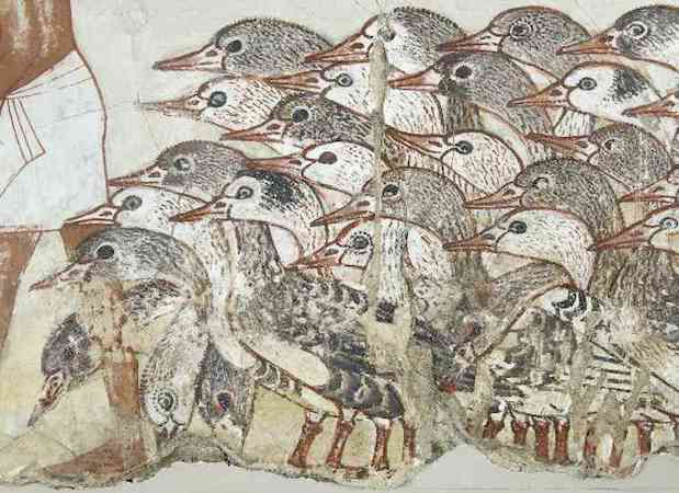 Nebamun's geese, a fragment of a scene from the tomb-chapel of Nebamun, c. 1350 B.C.E., 18th Dynasty, paint on plaster, 71 x 115.5 cm, Thebes © Trustees of the British Museum