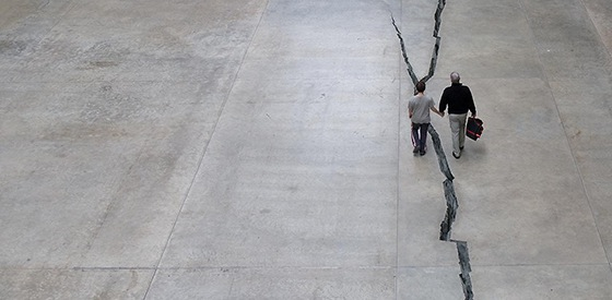 doris salcedo  shibboleth  article