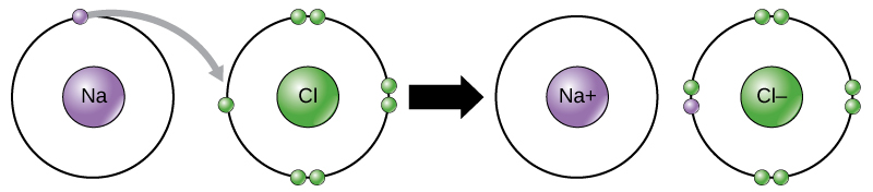 Solved: using carbon as an example, describe the structure.