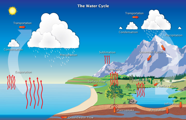 The water cycle (article) | Ecology | Khan Academy