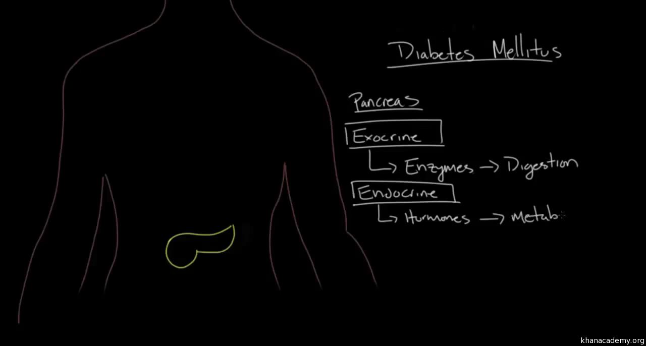 Pathophysiology - Type I diabetes (video) | Khan Academy