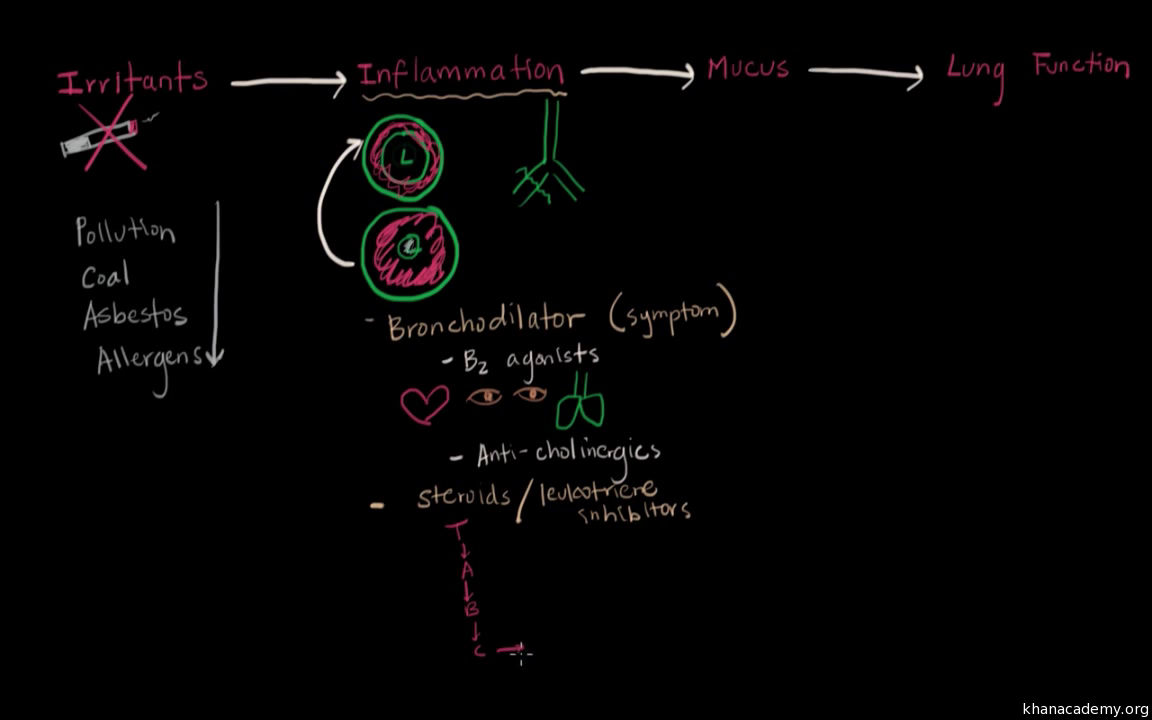 Chronic bronchitis treatment (video) | Khan Academy