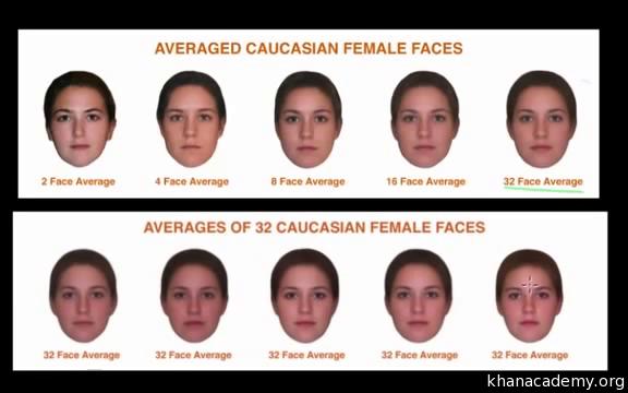 Attraction experiment facial
